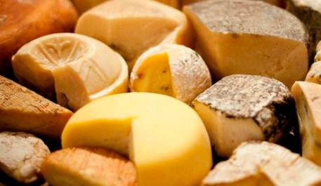 Фото сыра с Сырного фестиваля на Истре